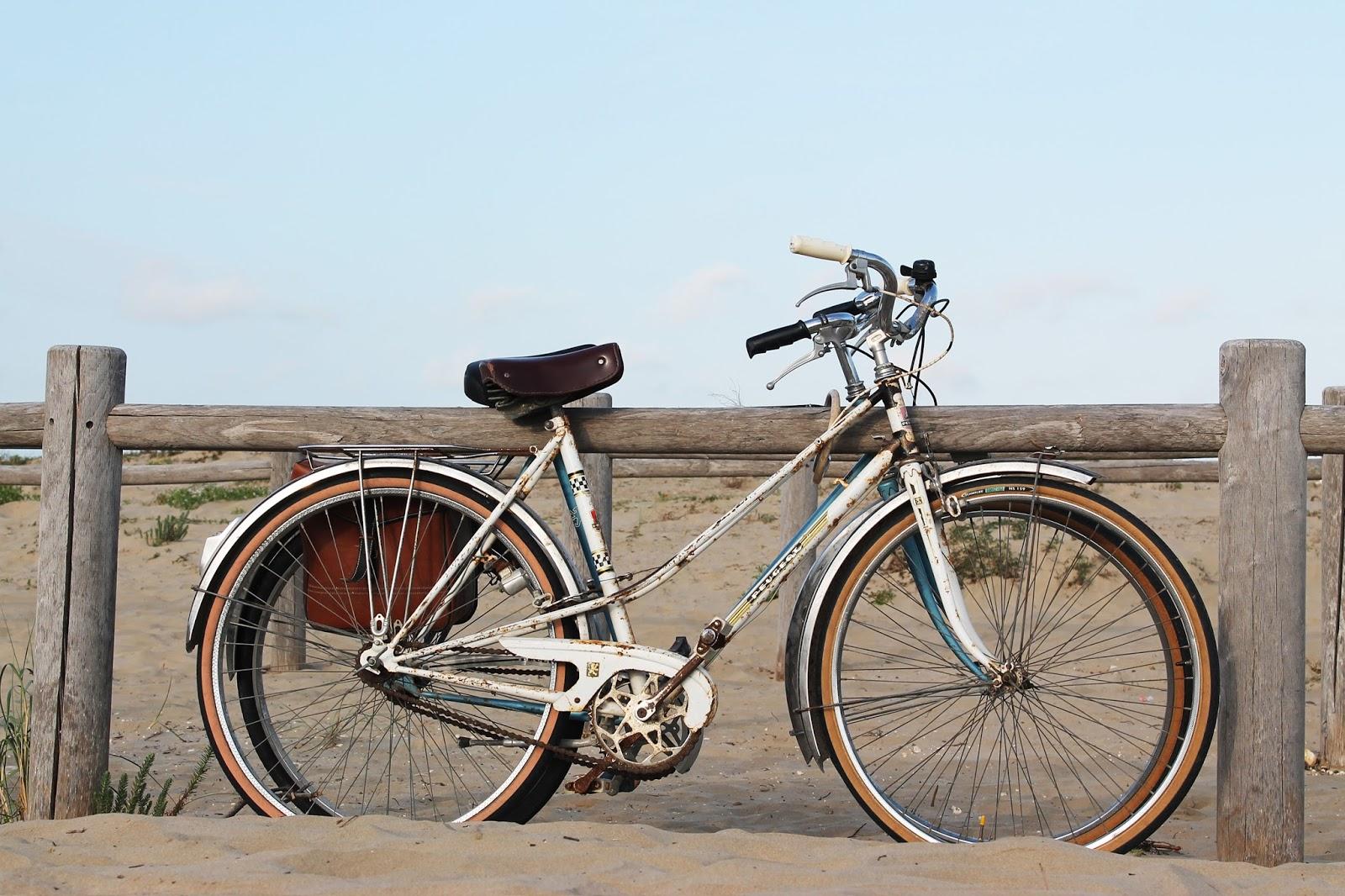 île oléron en vélo