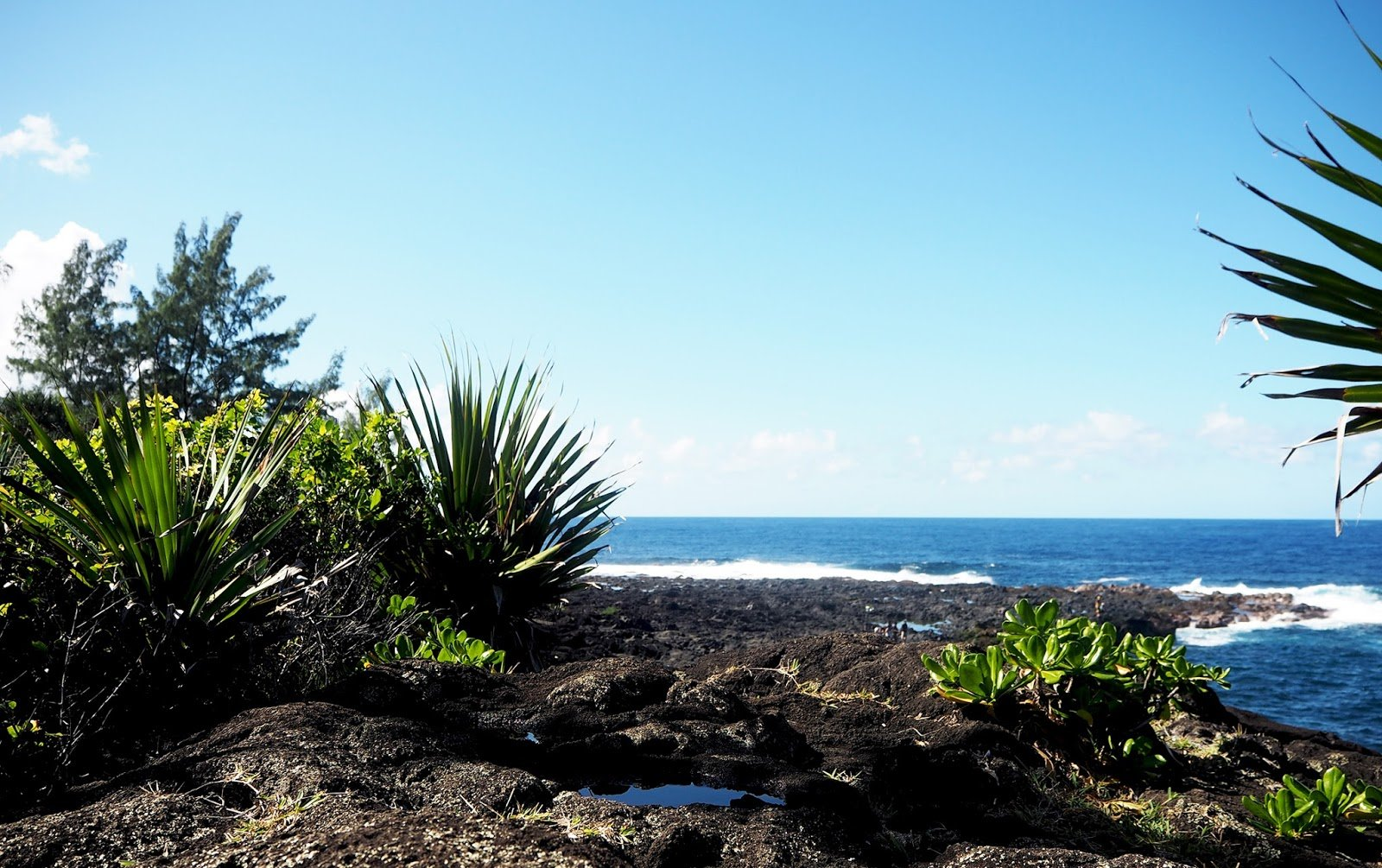 La Réunion paysage côtier