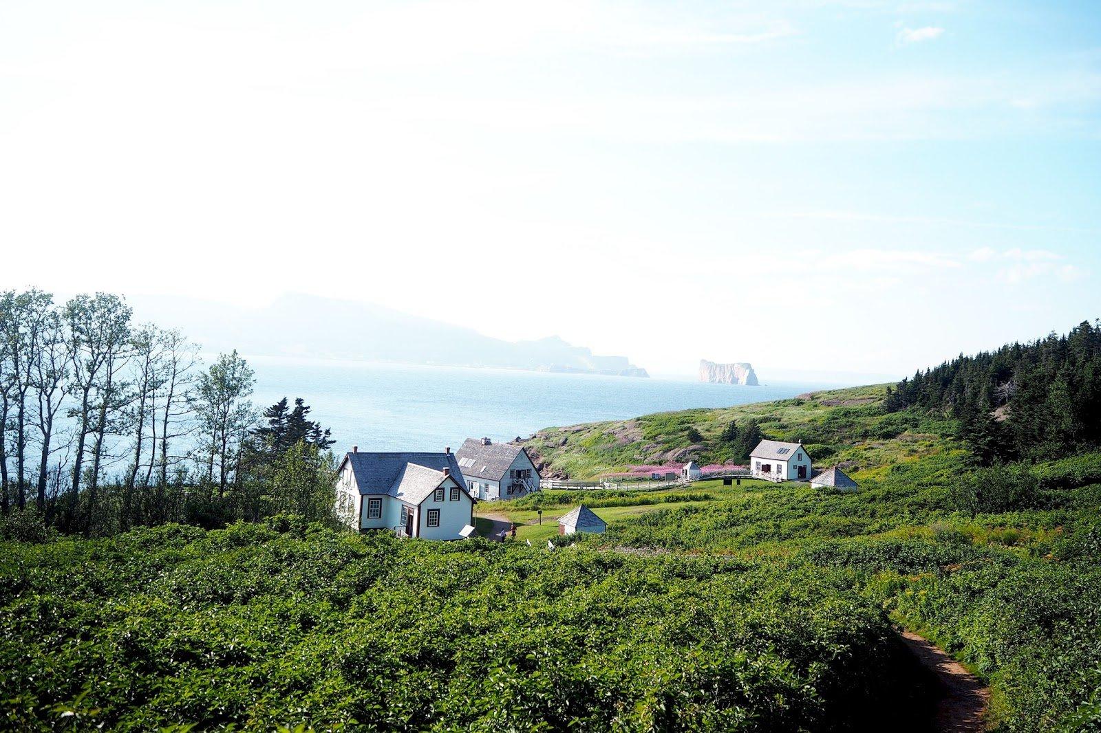 Gaspésie île Bonaventure