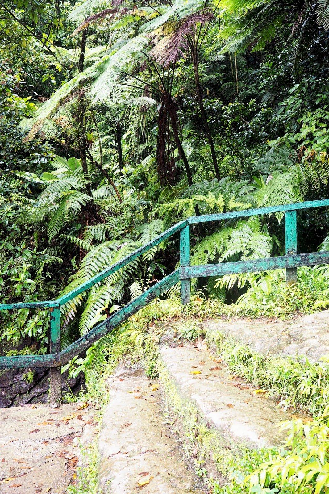 Dominique île nature