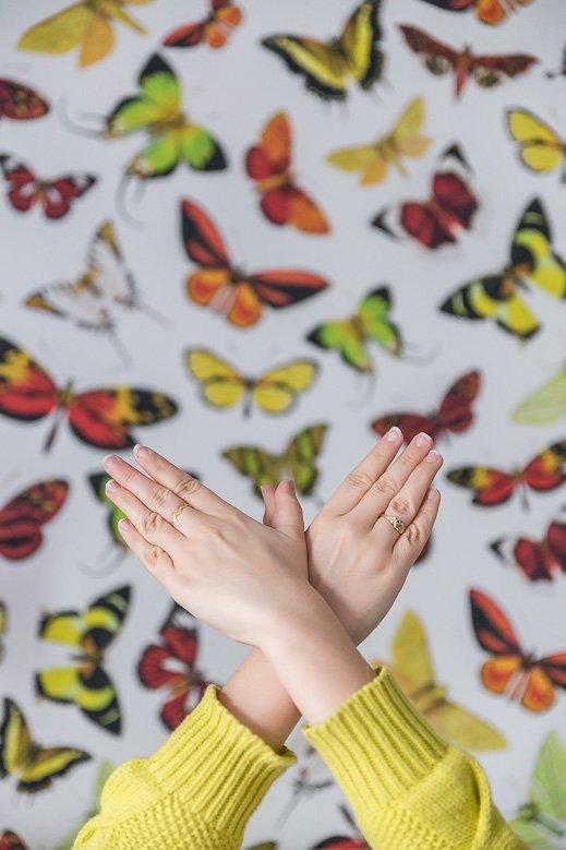 tapisserie imprimé papillons