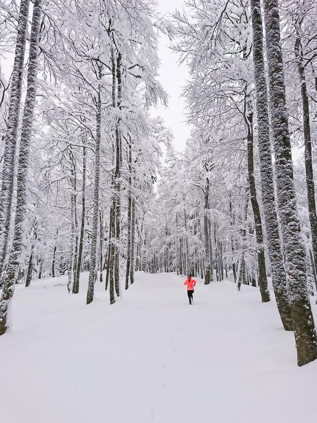 courir montagne hiver trail blanc