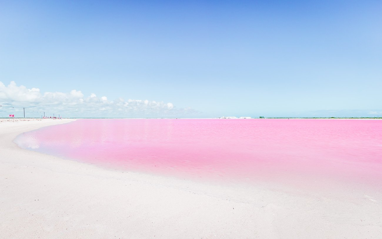 Las Coloradas Mexique Lac Rose
