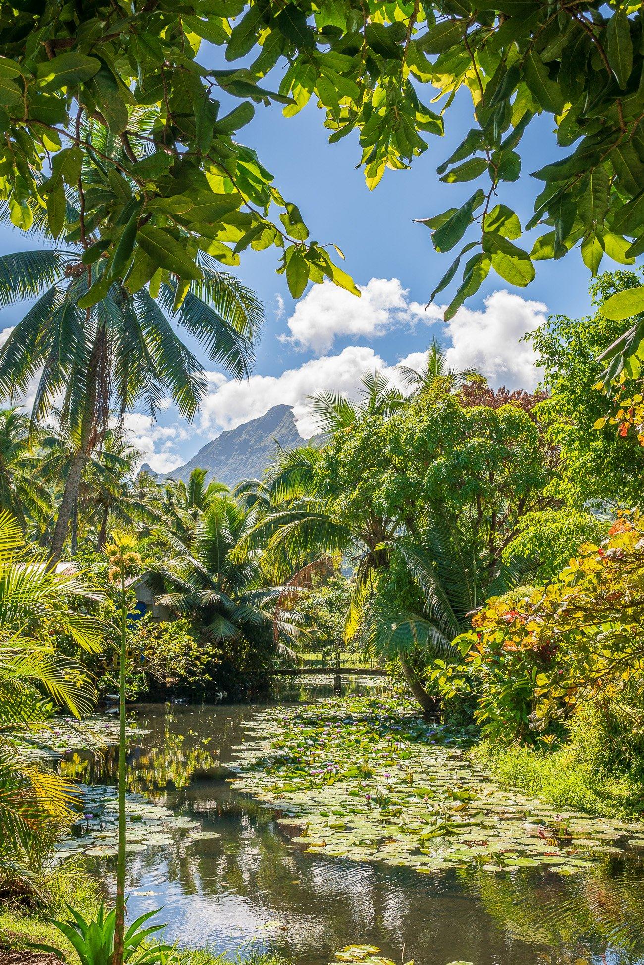 Tehahupoo Tahiti