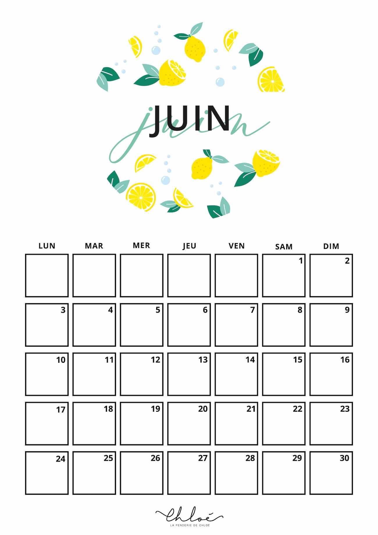 Calendrier Mensuel Juin 2019.Calendrier Juin A Imprimer La Penderie De Chloe Blog